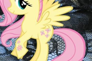 ponyfestish
